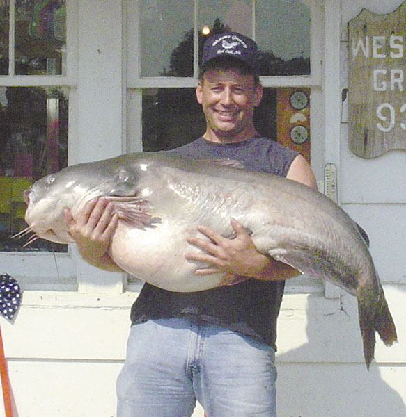 world record catfish caught in kerr lake World Record Blue Catfish Weight