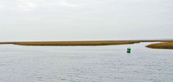 Saltwater series topsail island carolina sportsman for Topsail island fishing