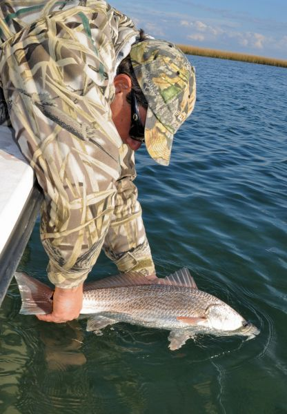 Numbers tell the tale of north carolina s saltwater for South carolina saltwater fishing regulations