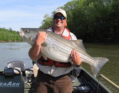 Heavy rains curtail roanoke river fishing next week looks for Nc freshwater fishing license