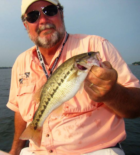 Spotted bass white perch now top targets at lake norman for Lake norman bass fishing