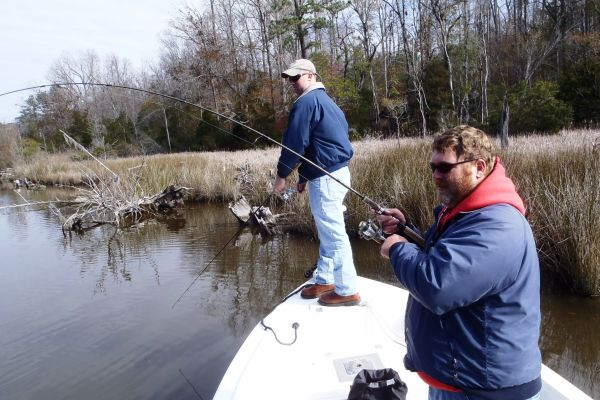 The bays and creeks of north carolina s new river are for New river nc fishing