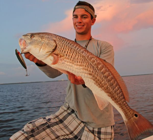 Red drum will go crazy for topwater lures for Red drum fishing rigs