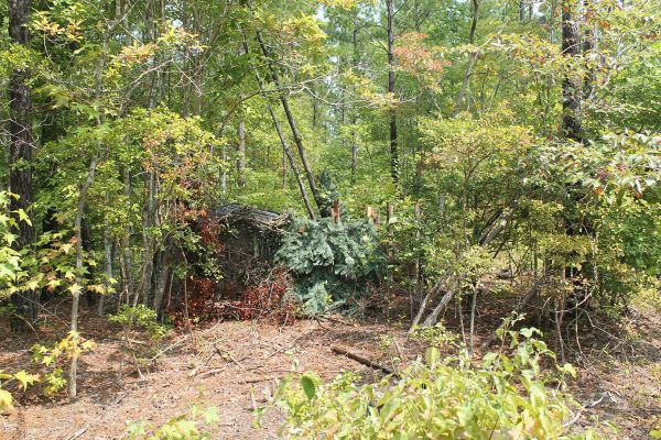 Picking The Right Deer Stand For Your Type Of Hunting