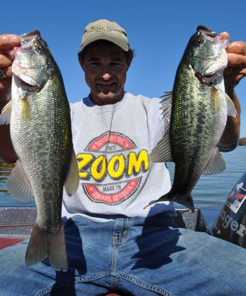 Lake gaston bass following bream shallow around hatching for Lake gaston fishing report