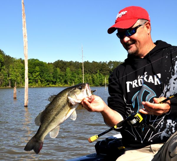 Despite postspawn jordan lake 39 s bass are still biting for Fishing in raleigh nc