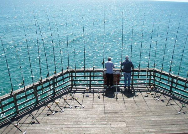 Piers on oak island offer fishermen the opportunity to do for Pier fishing net