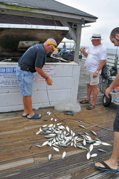 Ocp has survived coastal troubles through the years for Ocean crest fishing pier