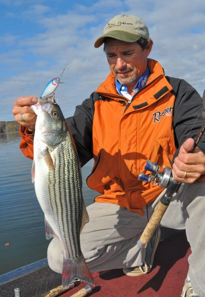 Stripers and largemouth bass make for a great mixed bag on for Kerr lake fishing hot spots