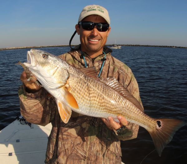 Hyco lake red drum fishing for Red drum fishing