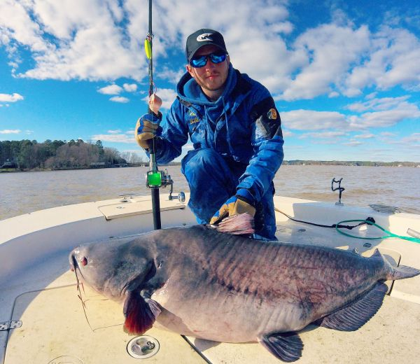 Murfreesboro angler catches 100 pound blue catfish on lake for Lake gaston fishing report