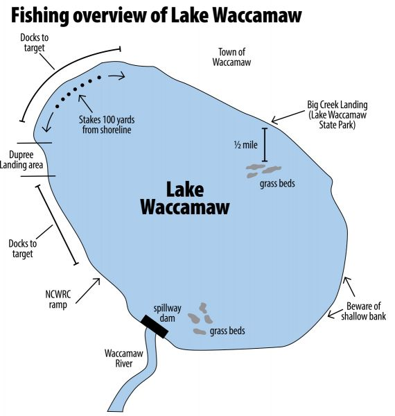 north carolina s lake waccamaw provides bass fishermen