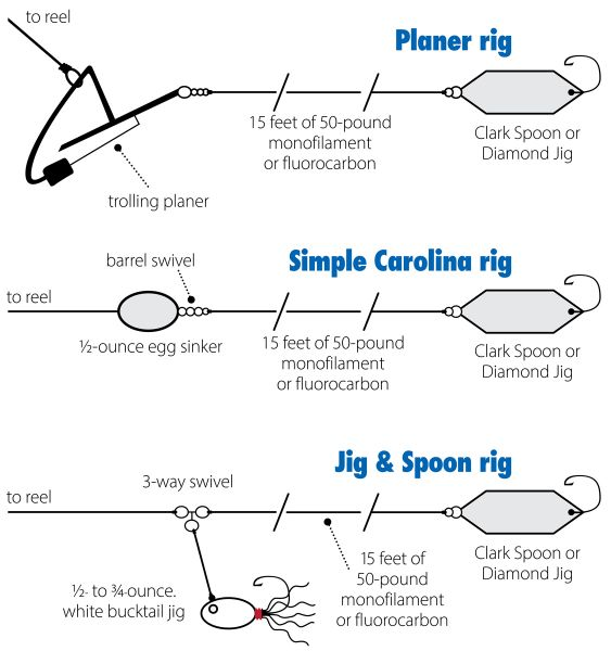 Three trolling rigs for spanish mackerel are popular among for How to troll for fish