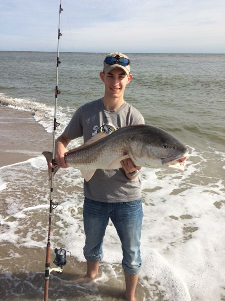 The beaches of south carolina s hunting island state park for South carolina surf fishing