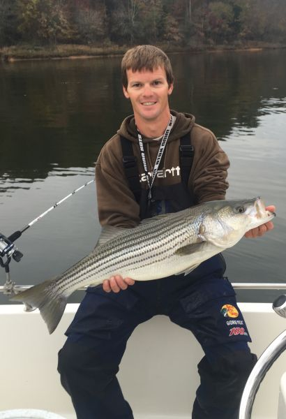Catch more striped bass with the right bait at the right for Striper fishing nc