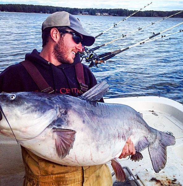 Lake gaston catfish fishing for Lake gaston fishing