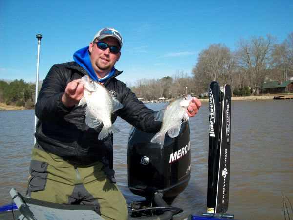 The numbers game crappie fishing is a numbers game at for Crappie fishing game