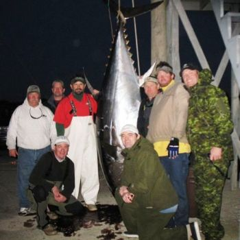 A pending state-record bluefin tuna was landed Saturday (March 12) off Oregon Inlet. To the left of the tuna (from left to right) are Capt. Ned Ashby, Virginia's Kenny Hines, Sea Breeze mate George Cecil, kneeling on left is Keith Allen of Virginia. To the right of the tuna (left to right) are Minnesota's Craig Allen (kneeling), Virginia's Lee Thacker, Virginia's Corey Schultz (who landed the big fish) and Pat Hughs of Minnesota.<br />