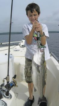 Jordan Lake lost approximately 7,000 striped bass in a hot-water kill over the past month.