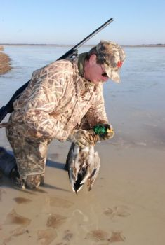 Plan ahead to take full advantage of your public duck hunting opportunity.
