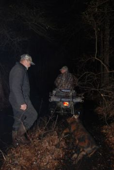 An ATV comes in handy for dragging a feral pig out of the swampy terrain in Brunswick County.