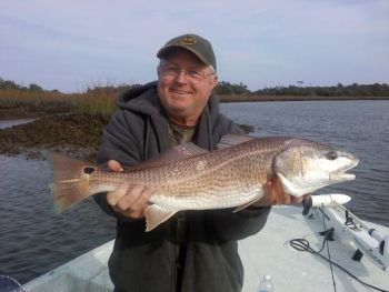 Keep up with the fight for protection for red drum, speckled trout and stripers on the special Gamefish Section on NorthCarolinaSportsman.com
