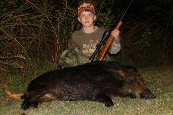 The N.C. Wildlife Resources Commission plans to allow hunters to take wild hogs and coyotes at night, with lights, on public lands.