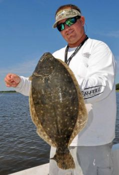 Fishermen are finding fall flounder in the bays and marsh creeks behind Bear and Brown's islands, and fishing should be increasingly good through October.