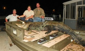 Kyle Blewer (left), Shanell Brewer (center) and Kevin Blewer (right) admire an 11-foot-9, 601-pound Lake Marion alligator that Shannel Brewer killed.<br />