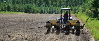 Waiting for the proper soil moisture is more important than getting spring food-plot planting done within a certain time frame.