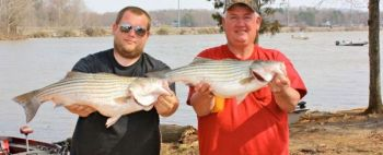 Ronnie and Layne Beck show off the only two stripers caught in the Tarheel Striper Club tournament at High Rock Lake on March 16.
