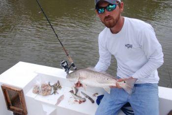 Capt. Jimmy Skinner of Edisto Beach catches plenty of redfish on live bait.