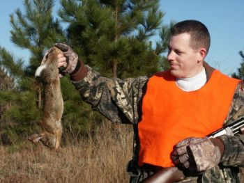 Not every WMA in South Carolina has a good population of rabbits, but find one with the right habitat and you can be in for some great hunting.