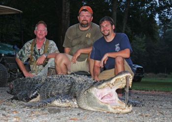 Mike Colboth, Chris Warren and Ernie Seruya took this 12-foot-2, 820-pound alligator out of the upper end of Lake Marion on Monday, Sept. 16. <br />