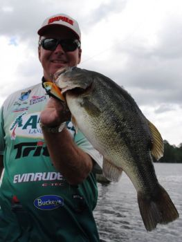 Lose that last chartreuse lipless crankbait? Make a note of it when you head to a boat or tackle show this month and replace it.