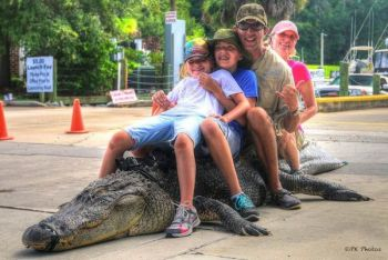 Elissa, Lainey and Zachary Rosenberg celebrate with Dr. Jason Rosenberg after taking an 11-foot-11, 472-pound alligator near Georgetown.