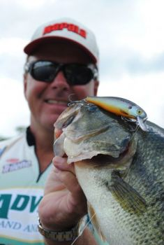 A jerkbait like an X-Rap can be a real weapon in November and December when bass suspend around schools of baitfish.