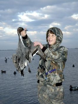 A pintail can be a tremendous bonus to a bag of mixed diving ducks and sea ducks.