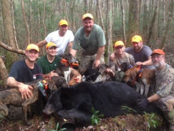 Many groups of bear hunters from the mountains migrate to eastern North Carolina for the December bear season.