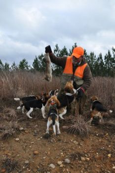 Mike McBride thrills his pack of beagles with an up-close encounter with an unlucky rabbit.