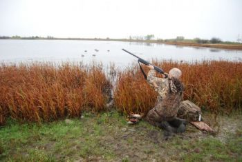 Waterfowl hunting will be on center stage at the Gold Leaf Waterfowlers Outdoor Expo in Wilson this weekend.