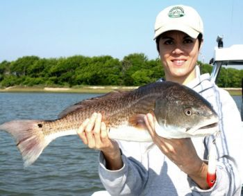 Natalie Blair caught this nice Charleston redfish on a red/white Super Spook Junior.