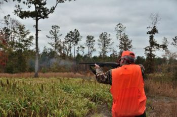 Hunters will look for certain features in a tract of land that might not be valuable to other buyers.