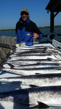 King mackerel have moved in off Grand Strand beaches in huge numbers.