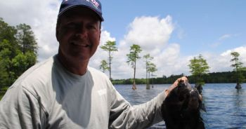 Bream can be a great target for any fisherman, but knowing their habits can help catch more summer bass.