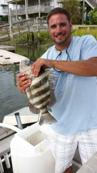 South Carolina's proactive sheepshead restrictions should protect the state's fishery for years to come.