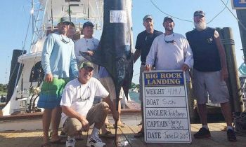 Sushi's 419.1-pound blue marlin, caught in Friday's fifth day of the Big Rock Blue Marlin Tournament, didn't break into the leaderboard.