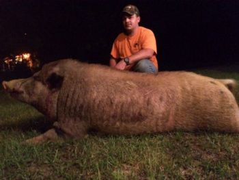 North Carolina hunter Earl Trent killed the 500-pound