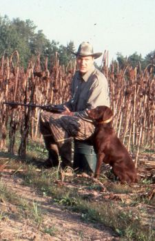 A retriever can make a huge difference in the number of doves you shoot that wind up in your game bag, because the real hunt often begins after the shot.