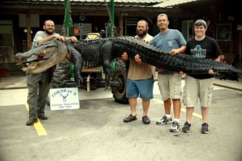 This Summerville party made their first gator hunt a big success.